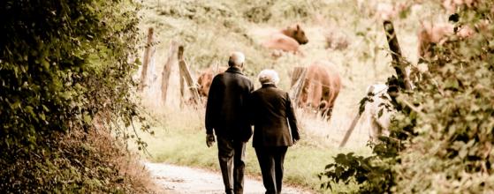 elderly stress