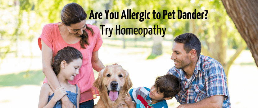 Are You Allergic To Pet Dander Try Homeopathy Rc Homeopathy
